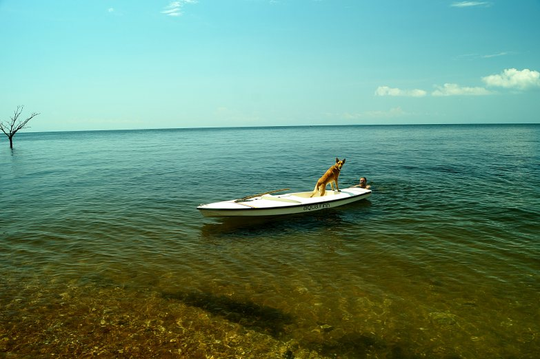 doginboat2